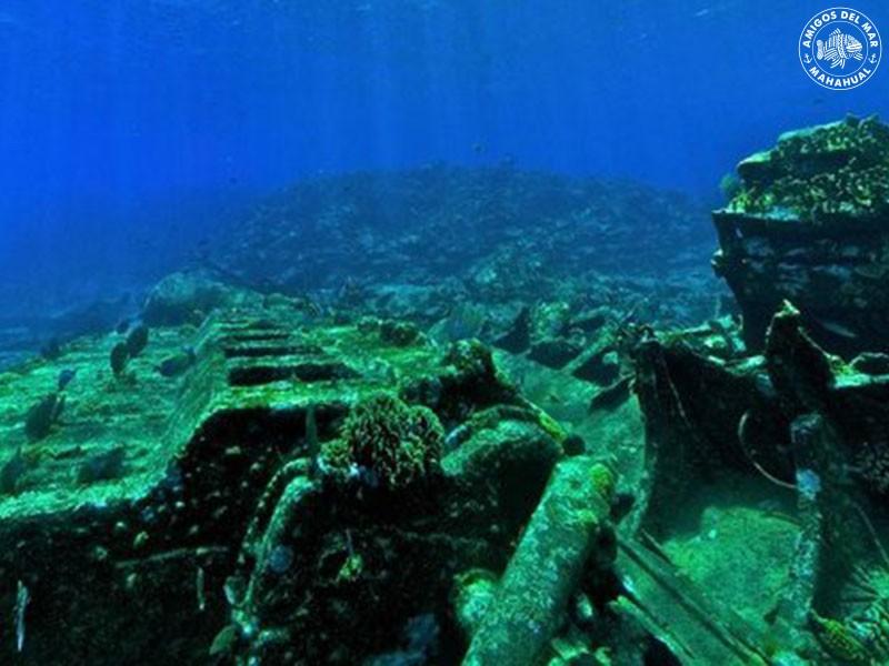 Banco Chinchorro Diving Amp Snorkeling Amigos Del Mar Mahahual